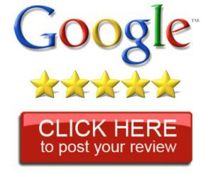 google reviews the kids dentist